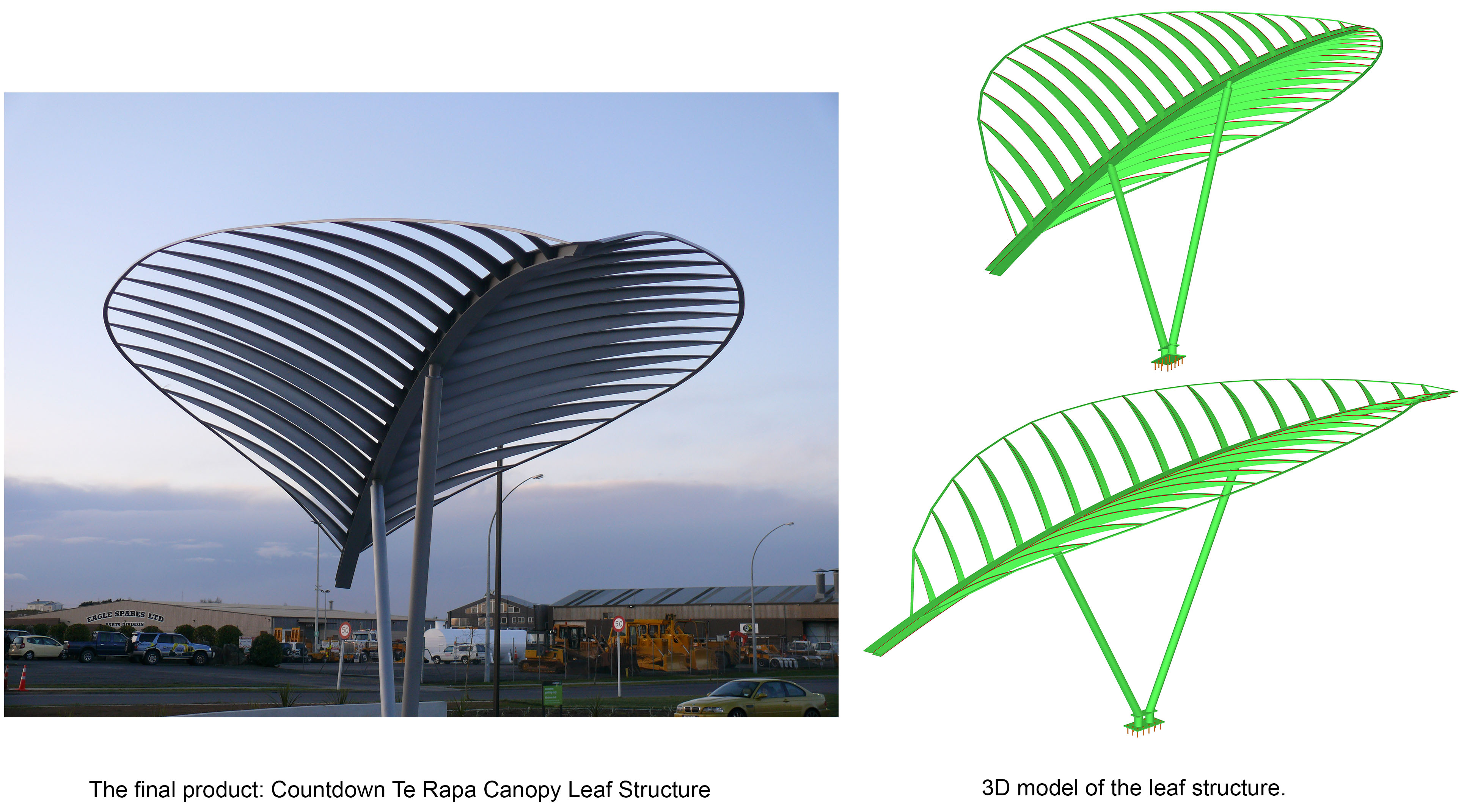 A Real Beauty - Canopy Leaf Structure  sc 1 st  KCL Engineering & Canopy Leaf Structure Countdown Te Rapa - KCL Engineering